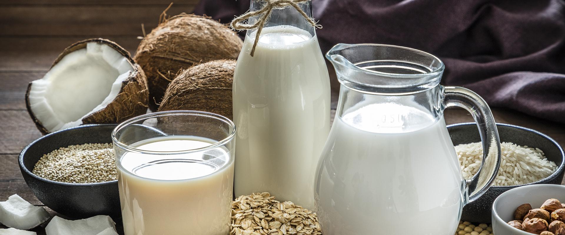 növényi tej cover