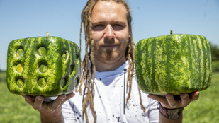 Már a boltokban a magyar gyümölcspiac fenegyereke