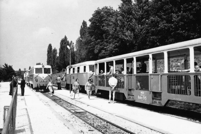 A Széchenyi-hegyi Gyermekvasút, a volt Úttörővasút első szakaszát 1948-ban nyitották meg, az utazókat vasutas-egyenruhába öltözött úttörők fogadhatták. A kalauzszerepre csak jól tanuló diákokat vettek fel, bármely tantárgyból a hármas osztályzat kizáró ok volt. A fotó 1970-ben készült a Szépjuhászné - régen Ságvári liget - megállónál.