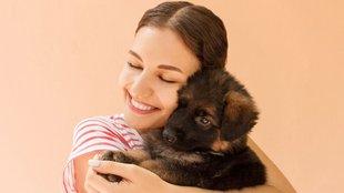 Honnan tudja a kutyád, hogy szereted?