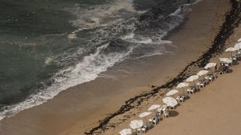Tizenegyen fulladtak vízbe Egyiptomban egy félresikerült mentőakció közben