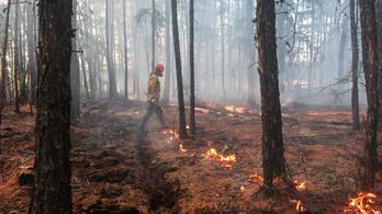 Csökkentek az erdőtüzek Szibériában, de egy részüket túl költséges lenne oltani
