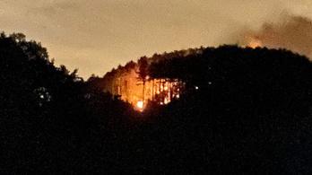 Lángolt az erdő Piliscsabánál