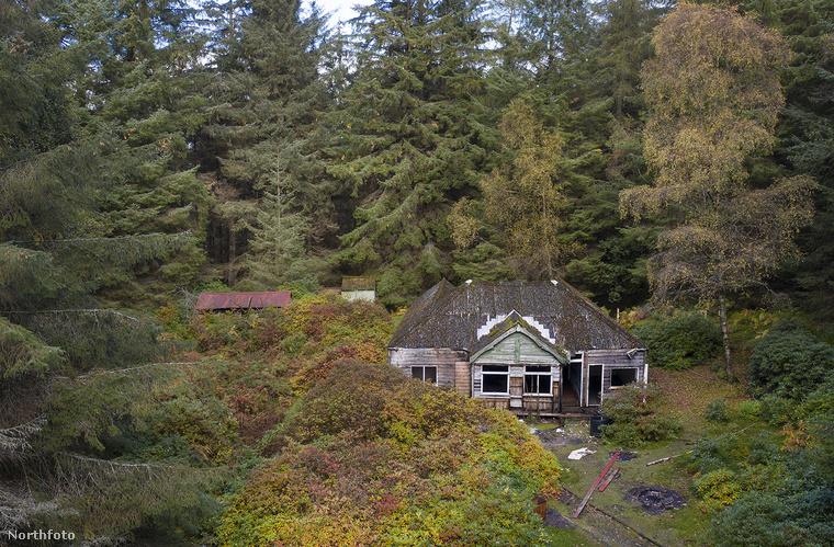 De lehet, nem is kell majd építkeznie, ugyanis a fák között megbújik egy 1920-as években, koloniál stílusban épült ház is, amire azért ráfér egy alapos felújítás