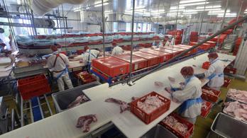 Átrendeződhet a hazai húsipar: a Spar megvette a Zimbót