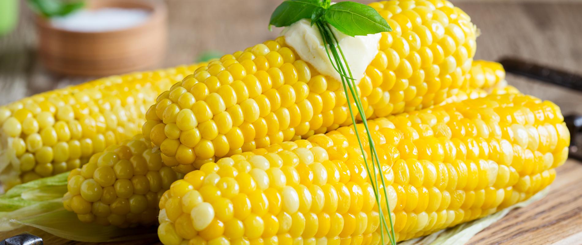 kukoricacover