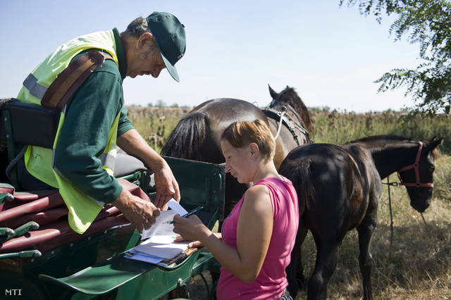 Képünk illusztrácó. Az ország egyetlen lovas postása a Bács-Kiskun megyei község körüli kiterjedt tanyavilágban látja el kézbesítői feladatait.
