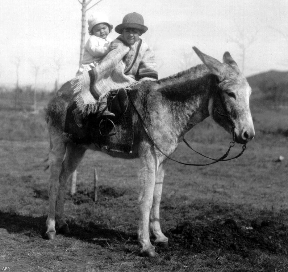 Az Argentínában született Guevara és húga, Celia egy szamáron lovagolnak. A fotó 1933-ban készült.