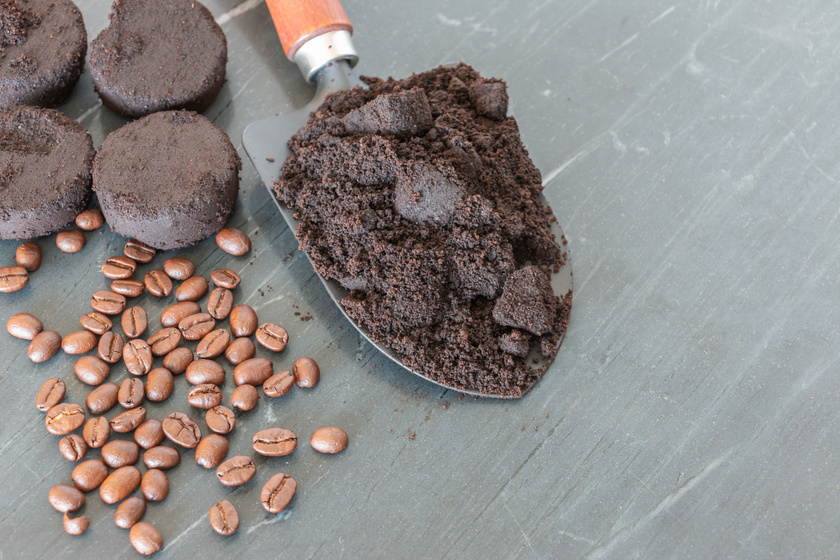 kávézacc 2