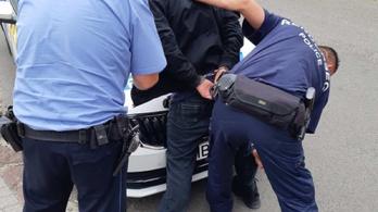 Poór törzszászlós és Dakota, a rendőrkutya kapta el a fegyveres rablót Pomázon