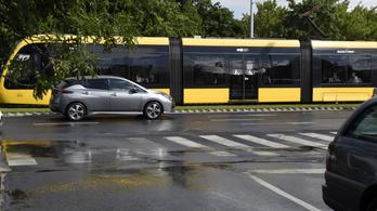 BKK: Technikai hibák miatt nem álltak forgalomba a legújabb CAF villamosok