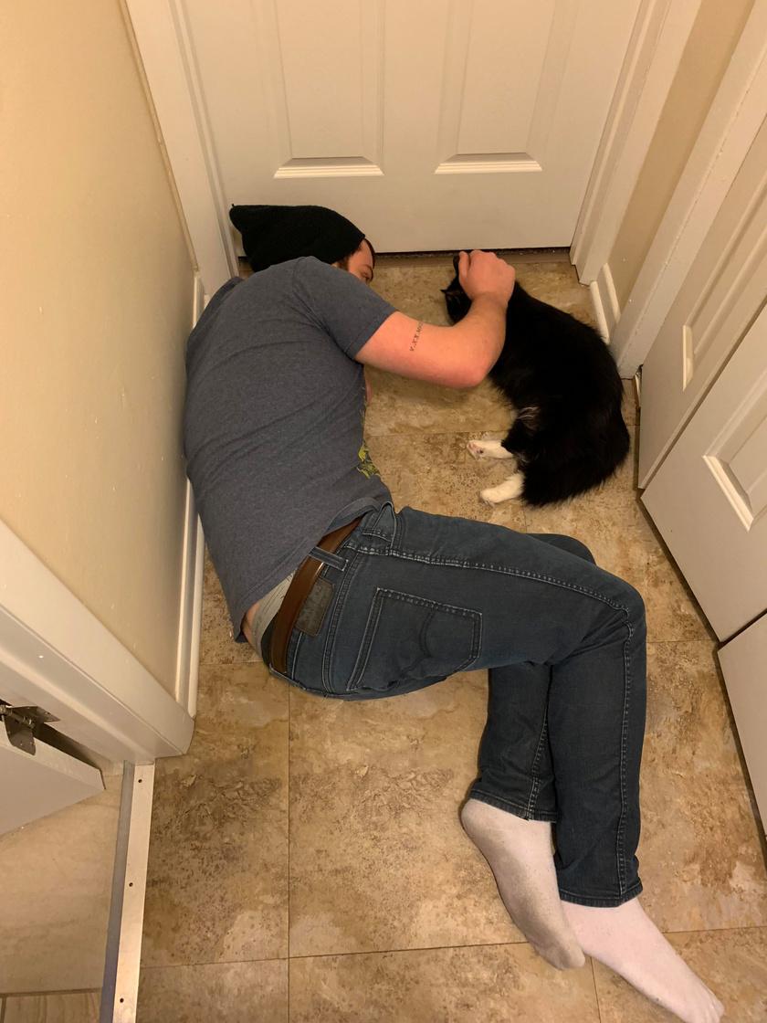 A férj azt mondta, utálja a macskákat. Egy kis idővel később így nyugtatja és vigasztalja közös cicájukat egy műtét után. A cukiságok mindenki szívébe belopják magukat.