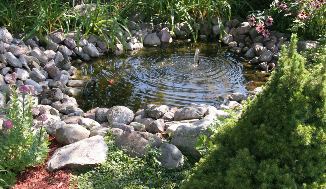 kerti tó kész 10