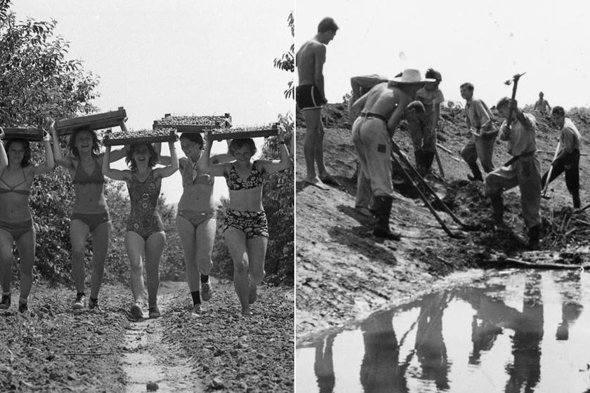 Ilyen volt az árokásás vagy a krumpliszedés a KISZ-építőtáborban: ma már sokan nem tudják, mi volt benne a jó