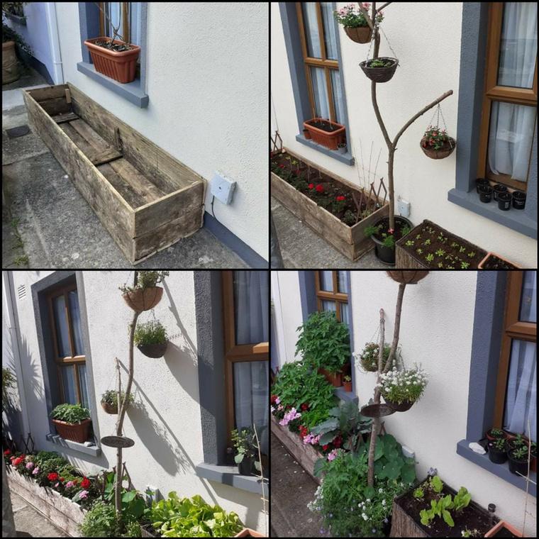 Ezen a képen látszik, mennyire hosszú volt a karantén: egy komplett kert kelt életre ezekben a ládában
