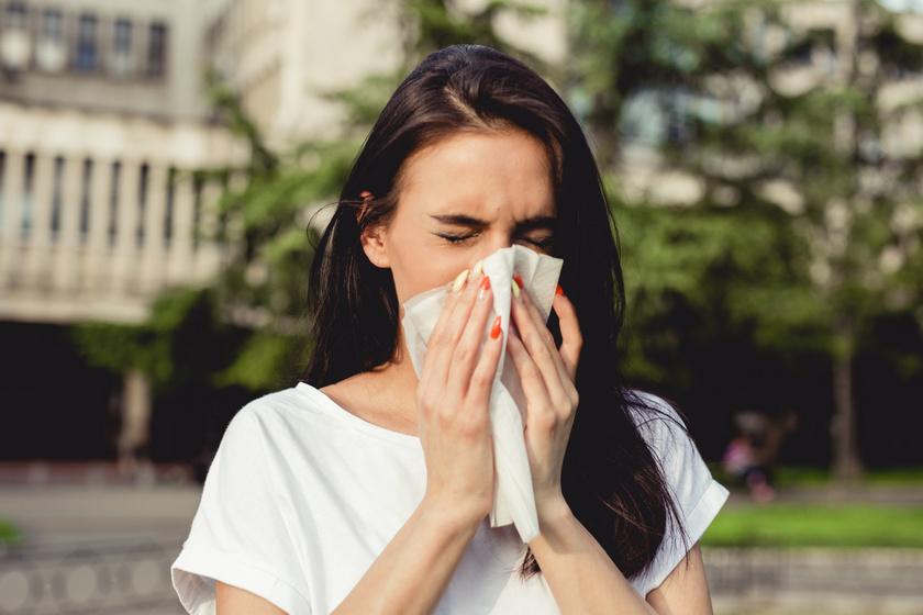Nyáron nemcsak a pollenek okozhatnak allergiát - Számos oka lehet a kellemetlen tüneteknek