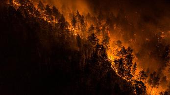 Már egy görögországnyi erdő égett le Szibériában