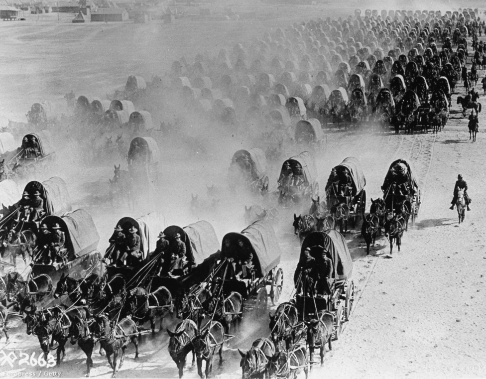 1918, amerikai katonák felszerelését szállító karaván az első világháborúban. A tankok megjelenésével a lovak fokozatosan kiszorultak a csatatérről, teherbírásuk miatt azonban még sokáig használták az állatokat csapatok és rakomány szállítására.