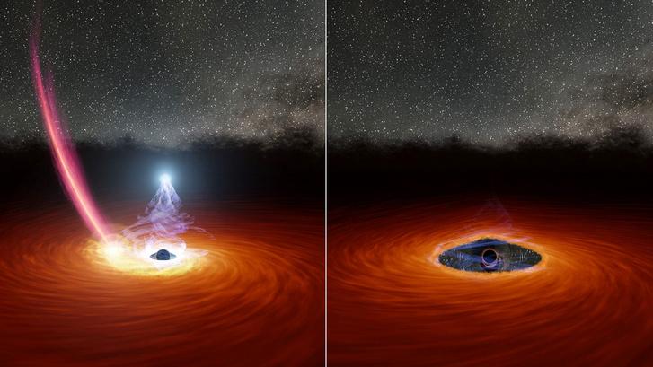 Illusztráció egy gázkoronggal körülvett, tömegbefogó fekete lyukról. A bal oldali ábrán vöröses sáv jelzi a korongba behulló törmeléket, a kibocsátott sugárzást pedig a fehér fénysugarak. A jobb oldali képen a törmelék megzavarta a gázt, a fekete lyuk körüli területről átmenetileg eloszlatva azt, így a sugárzás megszűnt.