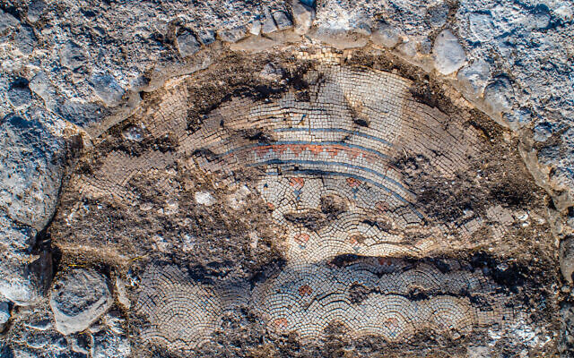 4.רצפת-הפסיפס-של-הכנסיה-העתיקה.-צילום-אלכס-ויגמן-רשות-העתיקות-64