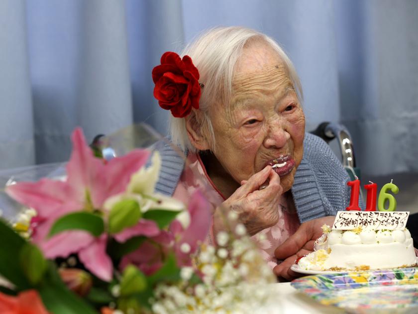 Misao Okawa torta