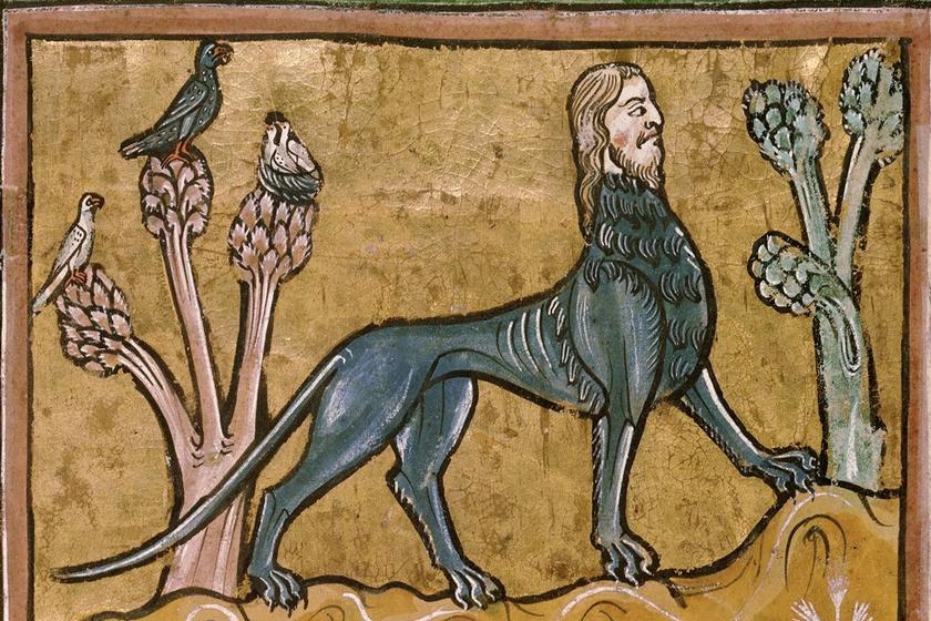 A mantikór a perzsa mitológiából érkezett a középkori művészetbe. Szfinxszerű lény, a teste az oroszlánéhoz, a feje az emberéhez volt hasonló, bizonyos ábrázolásokon a farka villás felépítésű, a skorpióéhoz hasonló. Könyörtelen szörnyetegnek tartották.