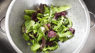 Teszt: így mosd a salátaféléket, hogy a legrövidebb idő alatt a legtisztábbak legyenek