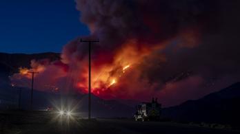 Nyolcezer embert menekítettek ki a kaliforniai bozóttüzek elől