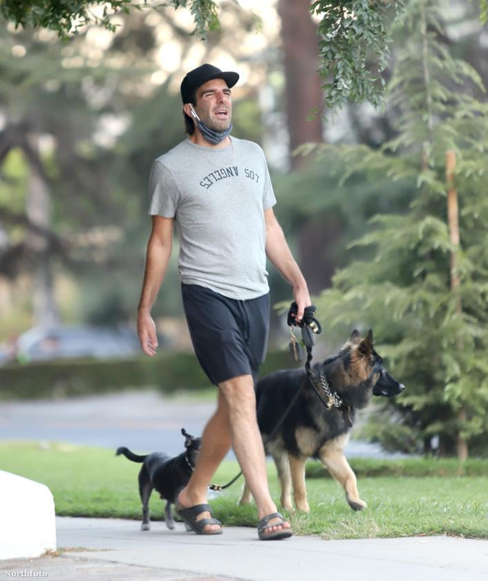 Zachary Quintót könnyebb felismerni kutyasétáltatás közben