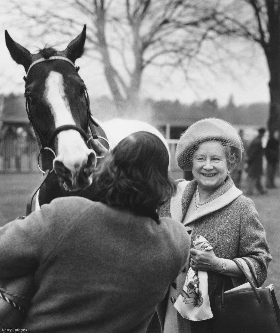 Az anyakirályné Sunny Boy nevű versenylovával 1976 februárjában az ascoti lóversenyen. Sunny Boy aznap nyerte meg a Fernbank Hurdle nevű versenyszámot, és ezzel megszerezte Erzsébet a 300. versenygyőzelmét. Az anyakirályné késő öregkoráig lelkes lóverseny-látogató maradt, sokszor lányával és a lovak iránt talán még nagyobb szenvedéllyel rajongó unokájával, Anna hercegnővel együtt nézte a versenyeket.