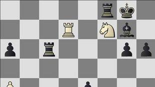"""""""Elegem van a sakkból!"""""""