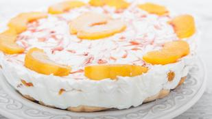 Egyszerű süti nyári hétköznapokra: barackos-túrókrémes kocka