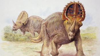 Már a dinoszauruszokat sem kímélte a rák