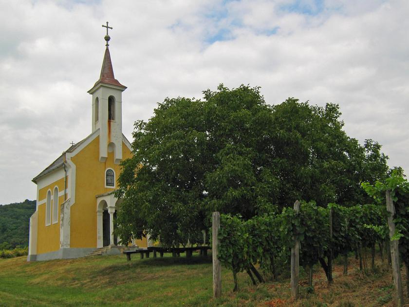 Gyönyörű szőlőhegyek közötti utakon kacskaringózva érhet az ember Lesenceistvándra. A környék legszebb kilátópontja a falu szélén magasodó Mária-kápolna környéke, ahonnan a Balatonig ellát az ember.