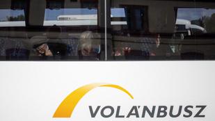 29 új buszt állít forgalomba augusztusban a Volánbusz