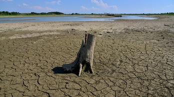 Még több és erősebb szárazságok várnak Közép-Európára