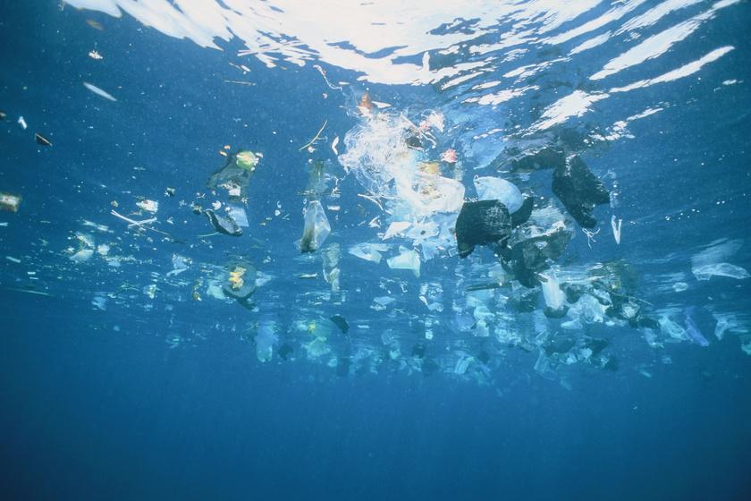 Hiába tisztítják az óceánt, nem javul a helyzet: aggasztó eredményt hozott egy friss kutatás