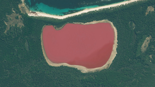 Mi a titka ennek a rózsaszín tónak?