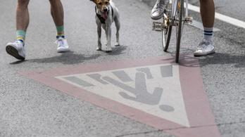 A járvány óta a tömegközlekedés helyett inkább gyalogolunk