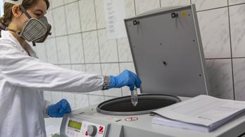 Budapesten és Debrecenben egyre több a szennyvízben a koronavírus örökítőanyaga