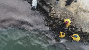Emberi hajat gyűjt Mauritius, hogy felfogják az olajszennyezést  a vízen