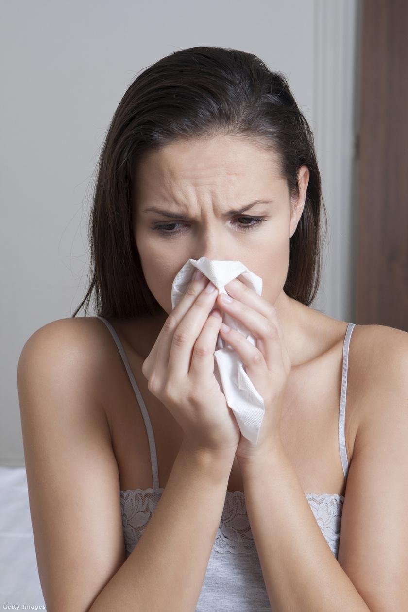 parlagfű allergia (3)