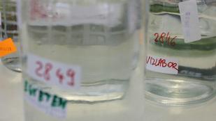 24.hu: Őrizetbe vették a veszélyes baktériumot tartalmazó ásványvizet gyártó cégcsoport vezetőjét