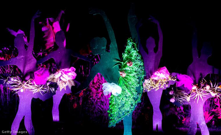 Az alábbi lapozgatónk nem egy újraértelmezett Alice-féle csodaországot mutat be, és nem is egy LSD-mámorban alkotó fotós képeit