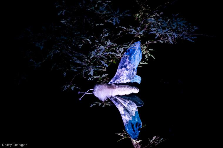 Végezetül itt egy a valóságosnál sokkal nagyobbra megalkotott rovar, amit egy faágra akasztottak rá