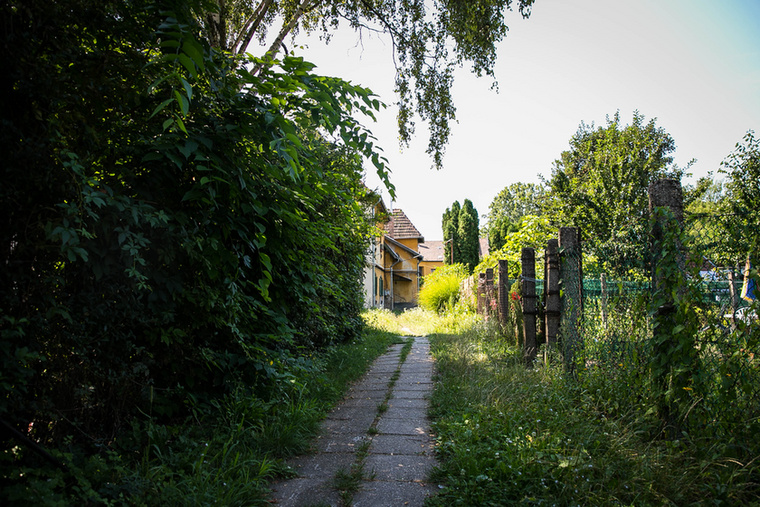 A házakat elhagyva kis belső kertekbe is bepillanthatunk