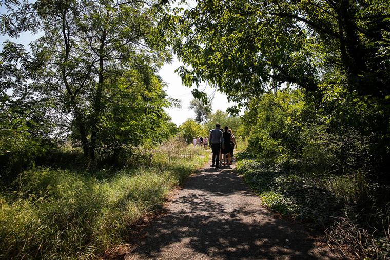 Fákkal és bokrokkal tarkított kerülő ösvényen át  érünk a Gázgyárhoz