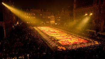 A járvány miatt rendhagyó lesz a brüsszeli virágszőnyeg