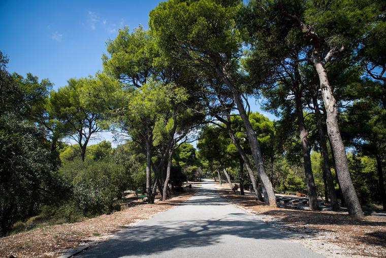 A hegyre felfelé mediterrán növényzet, fenyő- és tengerillatú friss levegő kísér, a környéken sétányok, sportpályák és játszóterek vannak, és a spliti állatkert állatai is itt élnek.