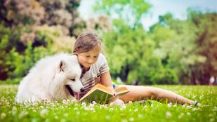 Olvassunk az állatokról, de hogyan? Szakértők ajánlják a legjobb könyveket